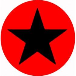 Chapa Estrella Anarquista