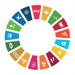 Chapa Desarrollo Sostenible