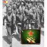 Pin del Ejército Popular