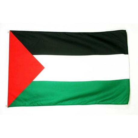 Bandera Palestina Grande